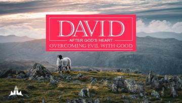 David pt4