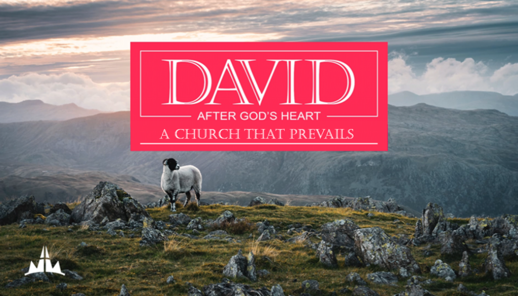 David pt5